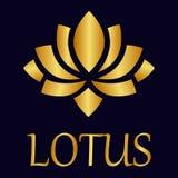 Oro di vettore di Lotus con testo Fotografia Stock Libera da Diritti