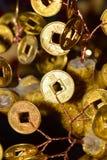 Oro e moneta scintillante con i segni sull'albero di ricchezza fotografia stock libera da diritti