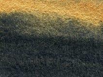 Oro e priorità bassa nera Fotografie Stock