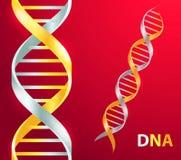Oro ed icona d'argento del DNA Illustrazione di vettore su fondo rosso royalty illustrazione gratis