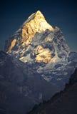 Oro himalayano (Pharilapche 6.073 m) Immagine Stock