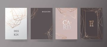 Oro, opuscolo rosa, aletta di filatoio, invito, carta illustrazione vettoriale