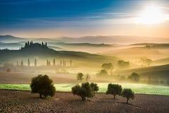 Oro y campos verdes en el valle en la puesta del sol, Toscana Foto de archivo libre de regalías