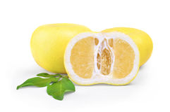 Oroblanco sweetie fruit group a hybrid of pomelo and white grape Royalty Free Stock Photography