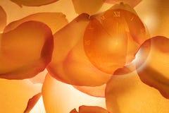 Orologio con i petali di rosa caduti Fotografia Stock