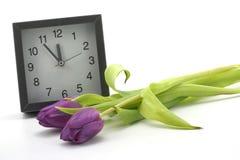Orologio con le fioriture dei tulis Fotografie Stock