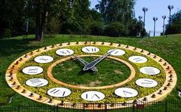 Orologio del fiore Fotografia Stock Libera da Diritti