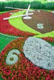 Orologio del fiore di Ginevra Immagine Stock