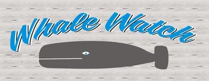 Orologio della balena Immagini Stock