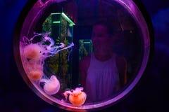 Orologio della donna per le meduse nel oceanarium di Kuala Lumpur Immagini Stock