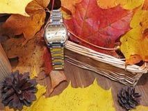 Orologio delle mani sul fondo di autunno Fotografia Stock