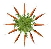 Orologio di carote Foto de archivo
