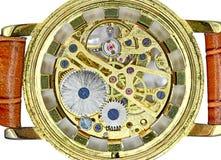 Orologio dorato del meccanismo di attrezzo Fotografia Stock