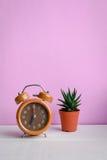 Orologio e cactus sullo scrittorio Fotografie Stock