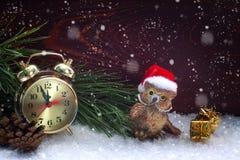 Orologio e gufo della decorazione di Natale Immagine Stock Libera da Diritti
