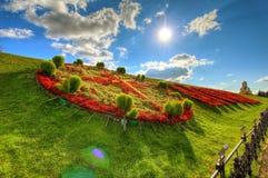 Orologio fatto dei fiori Fotografie Stock