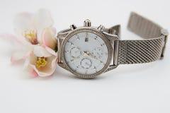 Orologio, fiore della cotogna fotografia stock