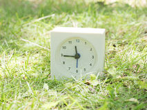 Orologio semplice bianco sull'iarda del prato inglese, 11:45 undici quarantacinque Immagine Stock