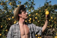 Orologio soddisfatto dell'agricoltore un limone Immagini Stock Libere da Diritti