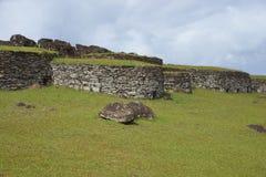 Orongo, Easter Island, Chile Royalty Free Stock Photo