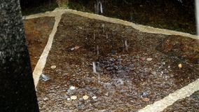 OROPA, BIELLA, ITALIEN - 7. JULI 2018: Münzen unten des Brunnens silbernes alpines Wasser, das von der gotischen Steinmaske fließ stock footage