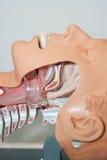Oropharyngeal Rohr in der Fluglinie Stockbilder