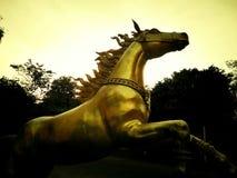 Oros del caballo funcionados con en de oro de madera Foto de archivo libre de regalías