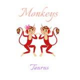 Oroscopo divertente con le scimmie sveglie Segni dello zodiaco taurus Fotografie Stock Libere da Diritti