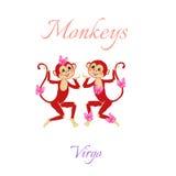 Oroscopo divertente con le scimmie sveglie Segni dello zodiaco virgo Fotografie Stock Libere da Diritti