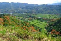 Orosi dal, Costa Rica Royaltyfria Bilder