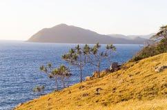 Orpheus Island Coastline Royalty-vrije Stock Foto's