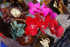 Orquídea Foto de Stock