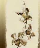 Orquídea. Acuarela Imagen de archivo libre de regalías