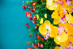 Orquídea artificial amarela com a parede verde para o fundo Fotos de Stock Royalty Free