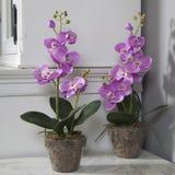 Orquídea artificial cor-de-rosa em pasta na tabela preta Imagens de Stock Royalty Free