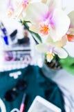 Orquídea bonita da flor fotos de stock royalty free
