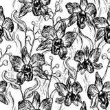 Orquídea bonita Grupo tirado mão isolado no teste padrão sem emenda do esboço branco do contorno do preto do fundo, projeto da ba ilustração do vetor