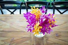 Orquídea colorida em um vaso de flor de vidro Fotos de Stock
