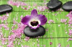 Orquídea con el ston del zen Imágenes de archivo libres de regalías