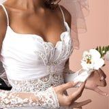 Orquídea da noiva para o noivo Foto de Stock Royalty Free