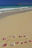 Orquídea da praia de Havaí e Aloha na areia fotografia de stock royalty free