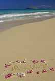 Orquídea de la playa de Hawaii y Aloha en la arena Fotografía de archivo libre de regalías