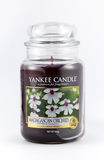 A orquídea de Madagáscar scented a vela do yankee em um fundo branco Imagem de Stock Royalty Free