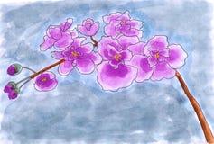 Orquídea de traça da flor da cor de água da ilustração Ilustração do Vetor