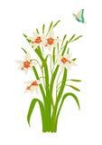 Orquídea do pavão com borboleta ilustração royalty free