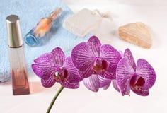 Orquídea en el cuarto de baño Imagenes de archivo