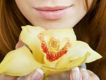 Orquídea en los dedos Fotos de archivo libres de regalías