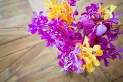 Orquídea exótica colorida Imagenes de archivo