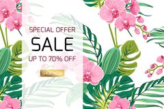 A orquídea exótica floresce a bandeira da venda das folhas da selva Foto de Stock Royalty Free