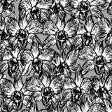 Orquídea hermosa Dé el contorno negro exhausto en el modelo inconsútil del bosquejo gris del fondo, diseño de la bandera de la ta Fotografía de archivo